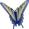 Modrý motýl